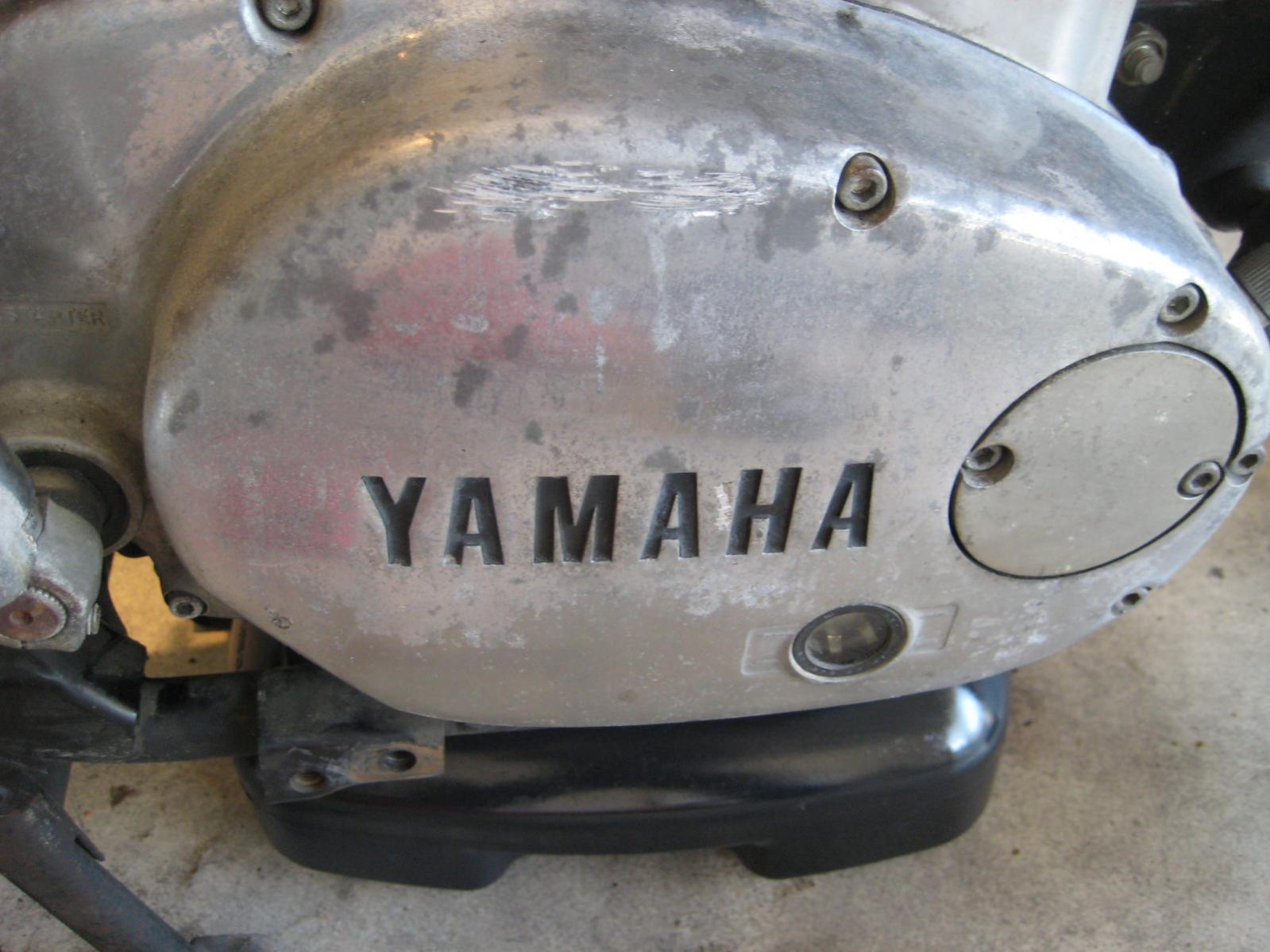 Help Please!!!! Stripped/broken fork drain screws | Yamaha