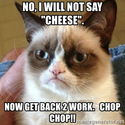 no-i-will-not-say-cheese-now-get-back-2-work-chop-chop.jpg